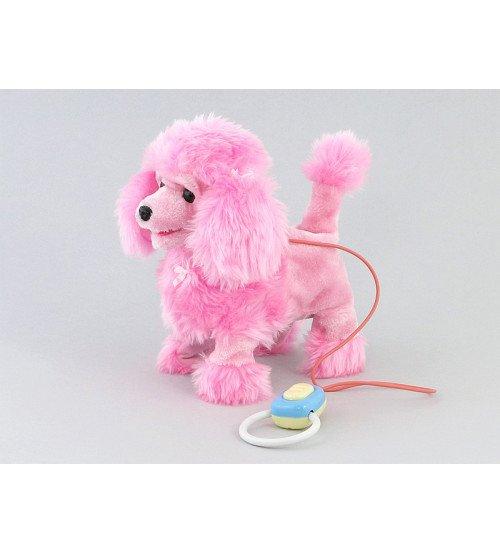Suns pūdelis vadāms ar vadu (staigā, rej) 24 x 25 x 12 cm 416598